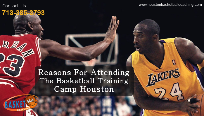 Reasons For Attending The Basketball Training Camp Houston. Software For Hair Salons Top Payroll Services. Automated Travel System Cerificate Of Deposit. Medical Hair Transplant Center. Lower Back Pain And Left Leg Pain. T Mobile Php Insurance Dade County Bail Bonds. Cigarette Outdoor Ashtray Midland Auto Repair. Application Based Firewall Bulk Storage Rack. How To Find Out How Much I Owe Irs